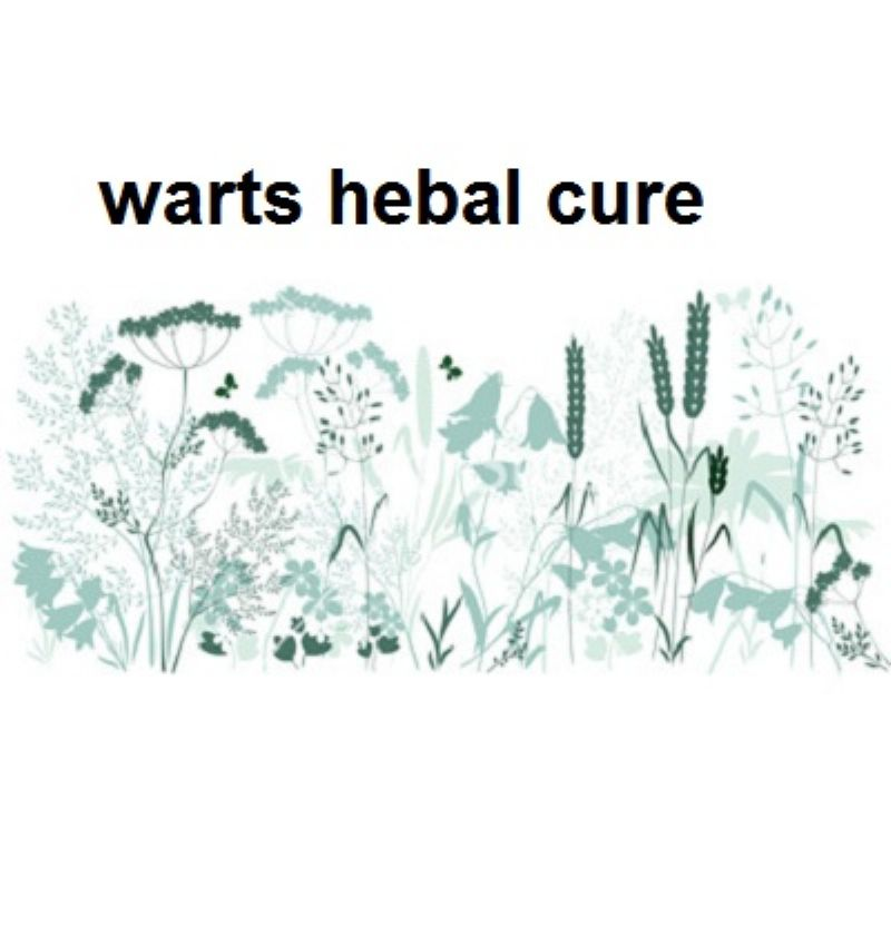 The Cure of Genital Warts, using herbal medicine
